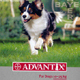 ADVANTIX RED 10 - 25KG 3'S